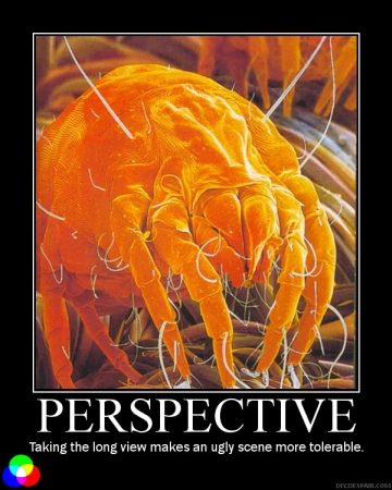 PERSPECTIVE: Taking the long view makes an ugly scene more tolerable.